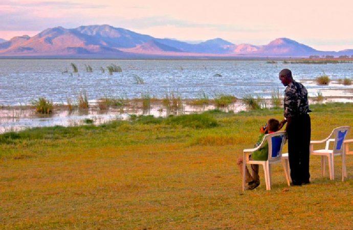 Partez pour un safari authentique au Kenya