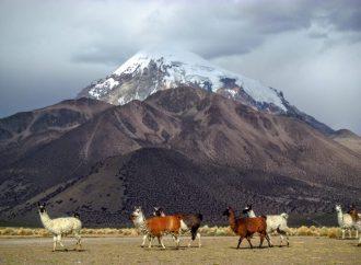 La Bolivie, une terre de contraste à explorer