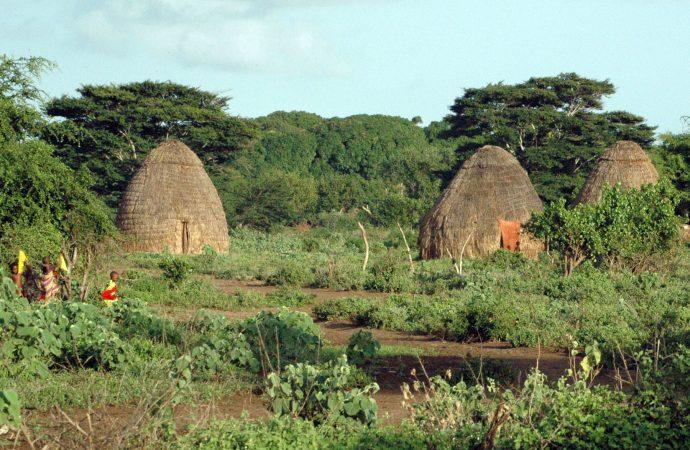 Le Kenya, une terre d'aventure et de découverte