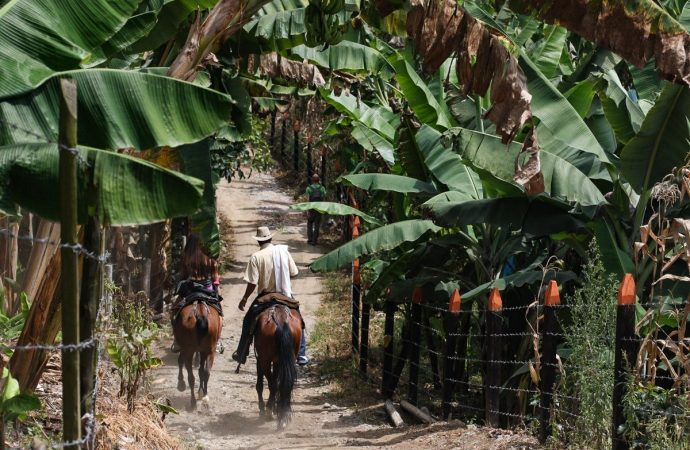 Quelle est la meilleure saison pour aller en Colombie ?