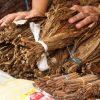 Île Maurice pour la famille: 6 activités à ne pas manquer