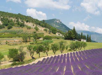 Les 3 plus beaux sites touristiques à visiter dans la Drôme